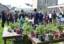 Les RDV de mai au jardin collectif